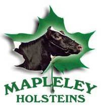 mapleley Holsteins Eastern Ontario Western Quebec Championship Show Holstein Cow Winners
